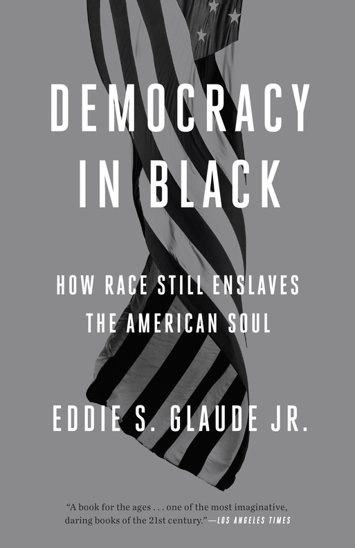 Democracy in Black Book Cover